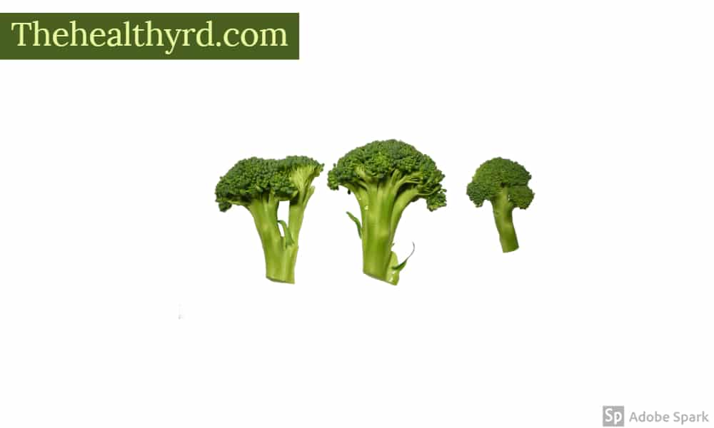Broccoli benefits for hormones by The Healthy RD