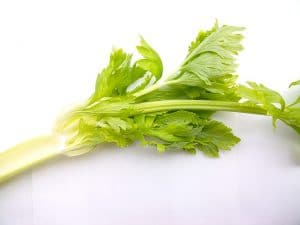 Celery Stalk by The Healthy RD