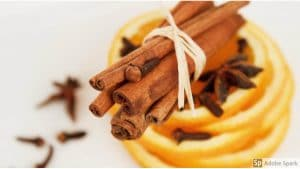 Cinnamon sticks and orange slices on a white background by The Healthy RD