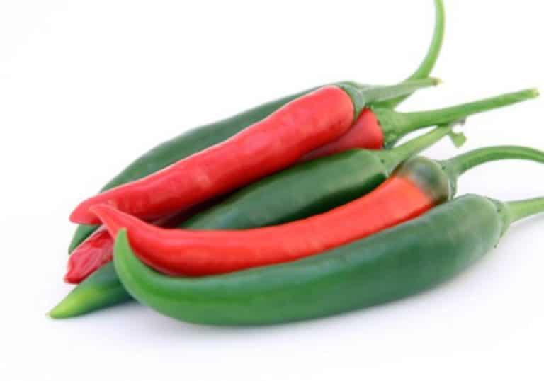 Capsicum Health Benefits and Uses