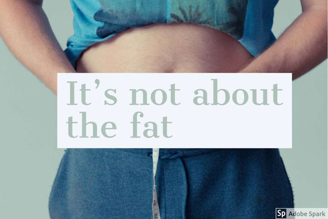 It's not about the fat by The Healthy RD