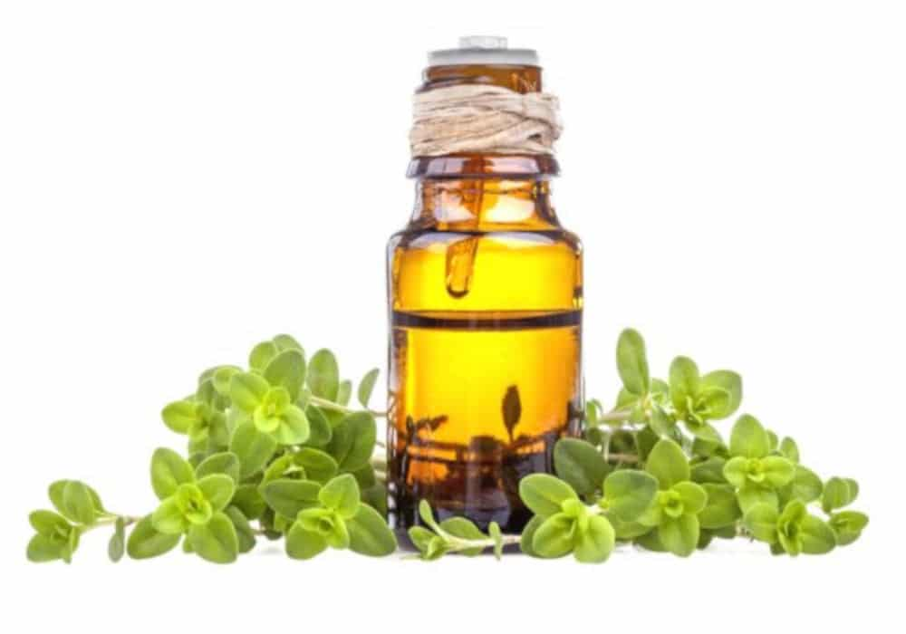Amber bottle of marjoram essential oil and marjoram leaves by The Healthy RD