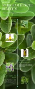Marjoram infographic of health benefits by The Healthy RD