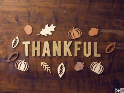Gratitude For Food