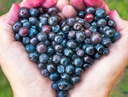 Image of huckleberries in the shape of a heart by The Healthy RD