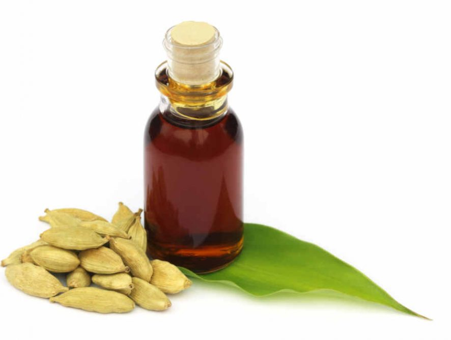 Cardamom Essential Oil: Plants as Medicine