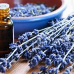 13 Scientifically-Proven Lavender Essential Oil Uses