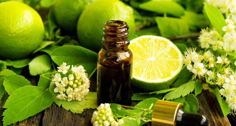 Amber essential oil bottle with fresh lime half and whole limes with lime blossoms and leaves by The Healthy RD