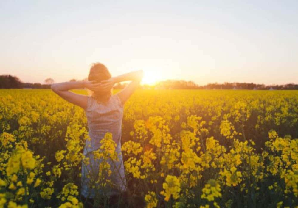 13 Natural Antihistamine Remedies