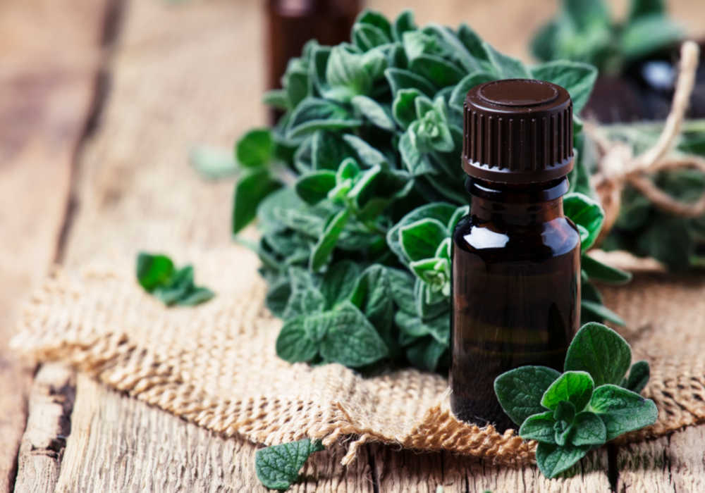 Fresh oregano leaves and an amber essential oil bottle by The Healthy RD