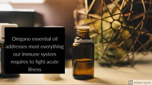 Quote describing that oregano oil addresses many things our body needs to fight acute illness by The Healthy RD