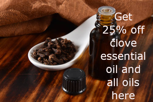 Clove essential oil and whole cloves and where to buy essential oils on sale by The Healthy RD
