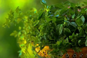 Fresh mint, thyme, oregano herb bowl by The Healthy RD