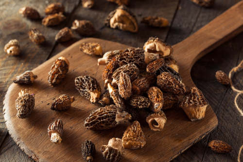 Fresh, organic, and raw morel mushrooms by The Healthy RD