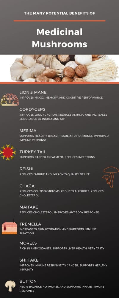 Medicinal mushrooms infographic by The Healthy RD