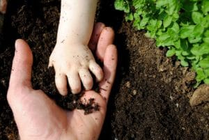 Soil with seedings and parent with child's hand by The Healthy RD