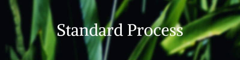 Standard process vitamins by The Healthy RD