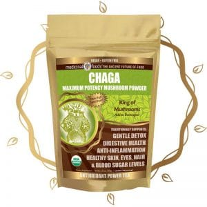 Chaga mushroom powder by The Healthy RD
