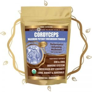 Cordyceps mushroom powder by The Healthy RD