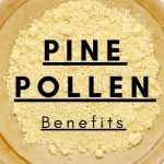 10 Potential Pine Pollen Benefits + Uses