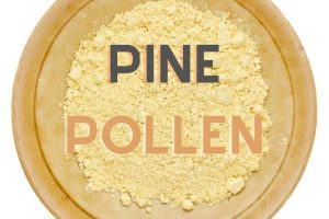 Pine pollen benefits by The Healthy RD