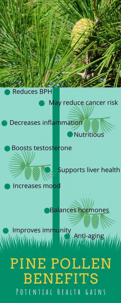 Pine pollen benefits infographic by The Healthy RD