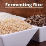 Fermented Rice for Beginners + Health Benefits
