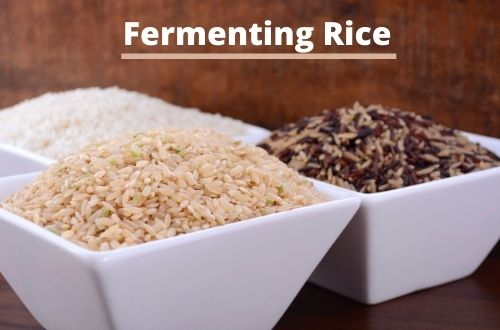 Fermenting rice with brown rice, white rice, and wild rice y The Healthy RD