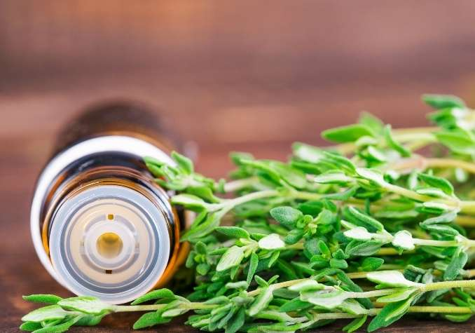 Amber essential oil bottle tilted on its side next to fresh thyme leaves on a brown background by The Healthy RD