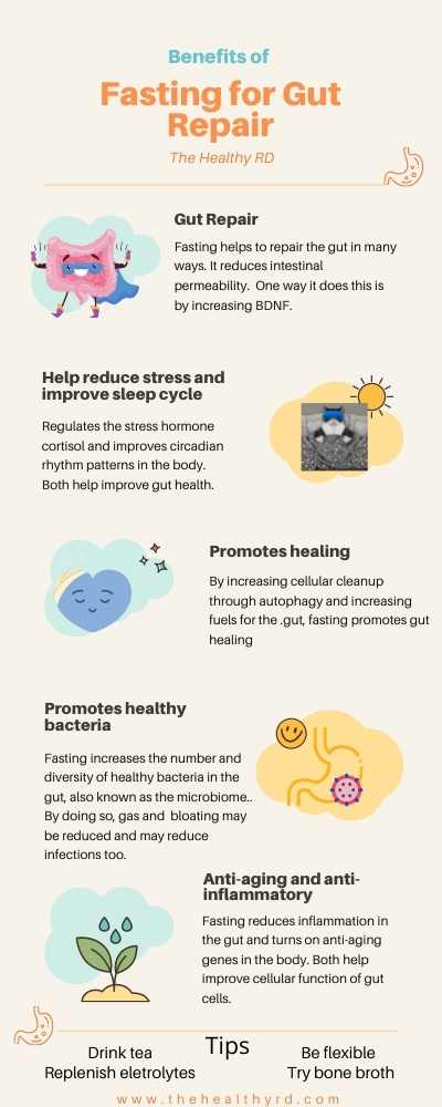 Fasting for gut health infographic by The Healthy RD with tips on how fasting promotes healthy bacteria, may reduce gas and bloating, has  anti-aging and anti-inflammatory effects, helps improve cellular function, helps to fuel the gut and promote autophagy, while also helping to reduce the stress hormone cortisol and improve circadian rhythms.